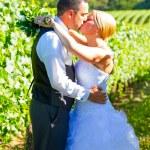 Bride and Groom Wedding Kiss — Stock Photo #37071273