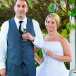 Bride and Groom Wedding Toasts — Stock Photo #37073415