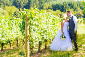 Bride and Groom Wedding Kiss — Stock Photo