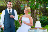 Bride and Groom Wedding Toasts — Stock Photo