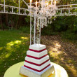 Outdoor Wedding Cake — Stock Photo