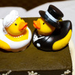 Постер, плакат: Rubber Duck Cake