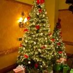 Christmas Tree — Stock Photo #37083149