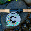Fly Fishing Reel — Stock Photo #37083181