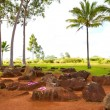 Stock Photo: HawaiiNative Birthing Stones