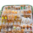 Fly Box Detail Dry Flies — Foto de Stock