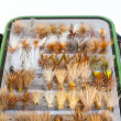 Fly Box Detail Dry Flies — Stok fotoğraf