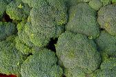 Broccoli Florets — Stock Photo