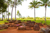 Hawaiian Native Birthing Stones — Stock Photo