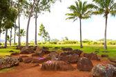 Hawaiian Native Birthing Stones — Stock Photo