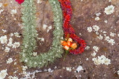 Leis on Hawaiian Birthing Stones — Stock Photo