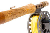 Fly Fishing Gear Rod and Reel — Stock Photo