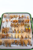 Fly Box Detail Dry Flies — Stock Photo