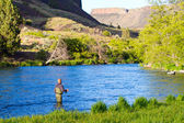 Fly Рыбалка реки Дейшут — Стоковое фото