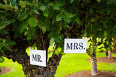 Mr and Mrs Signs at Wedding — Stock Photo