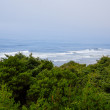 Stock Photo: Oregon Coast Daytime