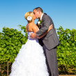 Bride and Groom First Kiss Ceremony — Stock Photo