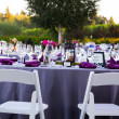 Wedding Reception Table Details — Stock Photo #37157133