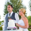 Stock Photo: Bride and Groom Wedding Toasts