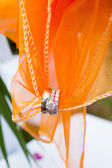Wedding Rings and Fabric — Stock Photo