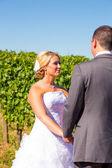 Bride and Groom Vows Ceremony — Stock Photo