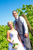 Portraits of Bride and Groom — Foto Stock