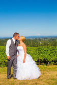 Bride and Groom with Fabulous View — Stock Photo