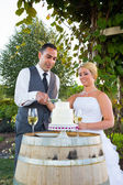Bride and Groom Cake Cutting — Stock Photo