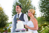 Bride and Groom Wedding Toasts — Foto Stock