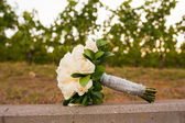 Bridal Bouquet in Vineyard — Stock Photo