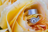 Wedding Rings at Reception — Stock Photo