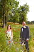 結婚式のカップルの新郎新婦の肖像画 — ストック写真