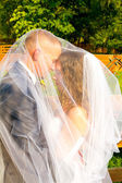 Bride and Groom Under Veil — Stock Photo