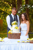 Bride and Groom Cutting Cake — Stock Photo