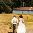 Getting Hitched at a Farm — Zdjęcie stockowe #41171141