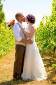 Vineyard Wedding Couple Portrait — Stock Photo