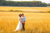 Bride and Groom in a Field at Sunset — Stock Photo