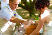 Bride and Groom Tree Planting — Stock Photo