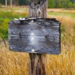 Blank Wooden Sign in Field — Stock Photo #41522027