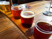 Craft Beer Sampler — Stock Photo