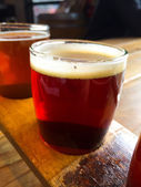 Craft Beer Sampler — Foto Stock