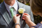 Pinning Boutineer on Groom — Stock Photo