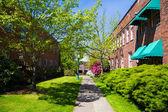Empty Spring Walkway University of Oregon — Stock Photo