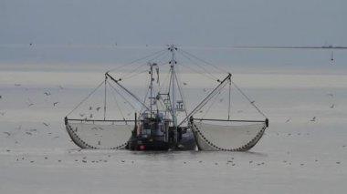 捕虾船 — 图库视频影像