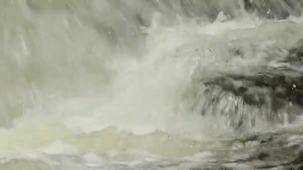 Agua salvaje — Vídeo de stock