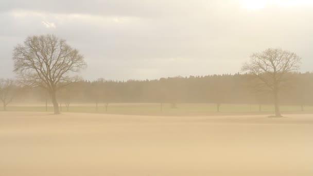 Erosión del suelo — Vídeo de stock