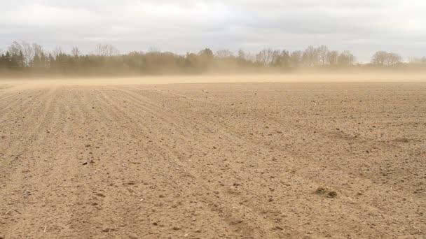 Tormenta de polvo — Vídeo de stock
