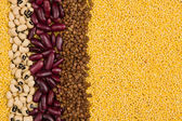 Millet, buckwheat, red beans and black-eye beans stripes texture — Stockfoto