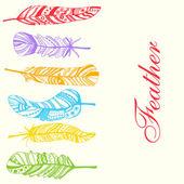 Colorful feathers — Cтоковый вектор