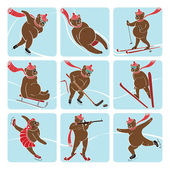 Set of brown bear plays winter sport. Vector humorous illustration. — Stock Vector